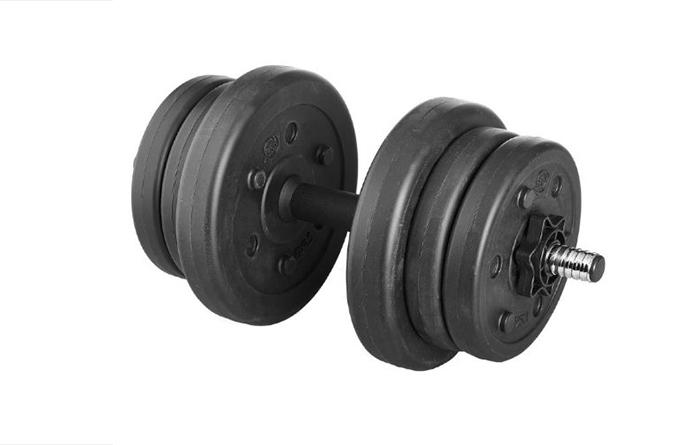 Гантель сборная Lite Weights 10 кг (1 шт)