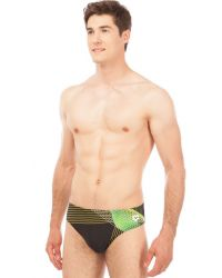 Arena Плавки Viborg Brief