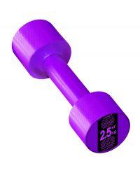 Гантель с пластиковым покрытием Streda Home 2,5 кг (1 шт) Purple
